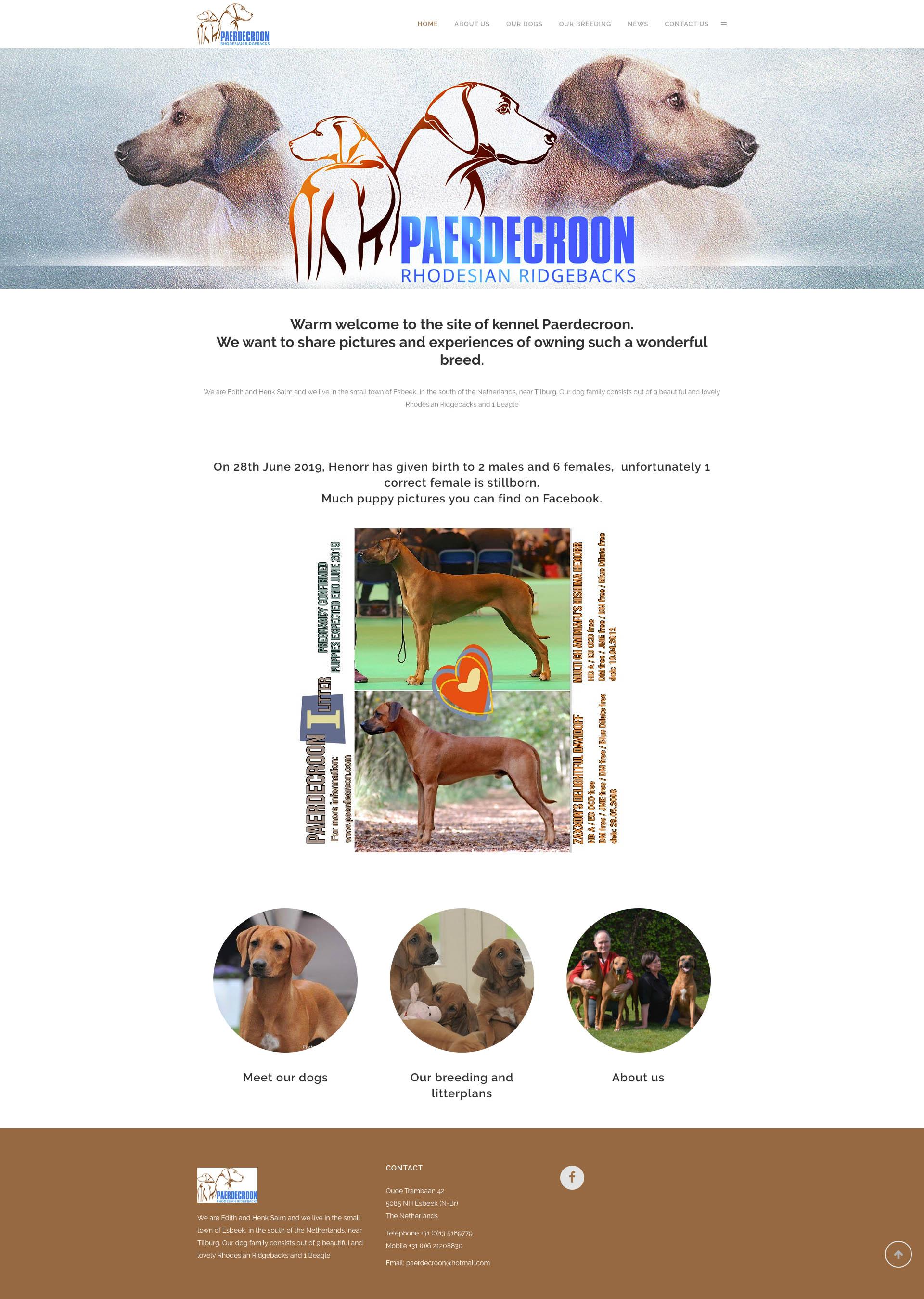 Paerdecroon - Home