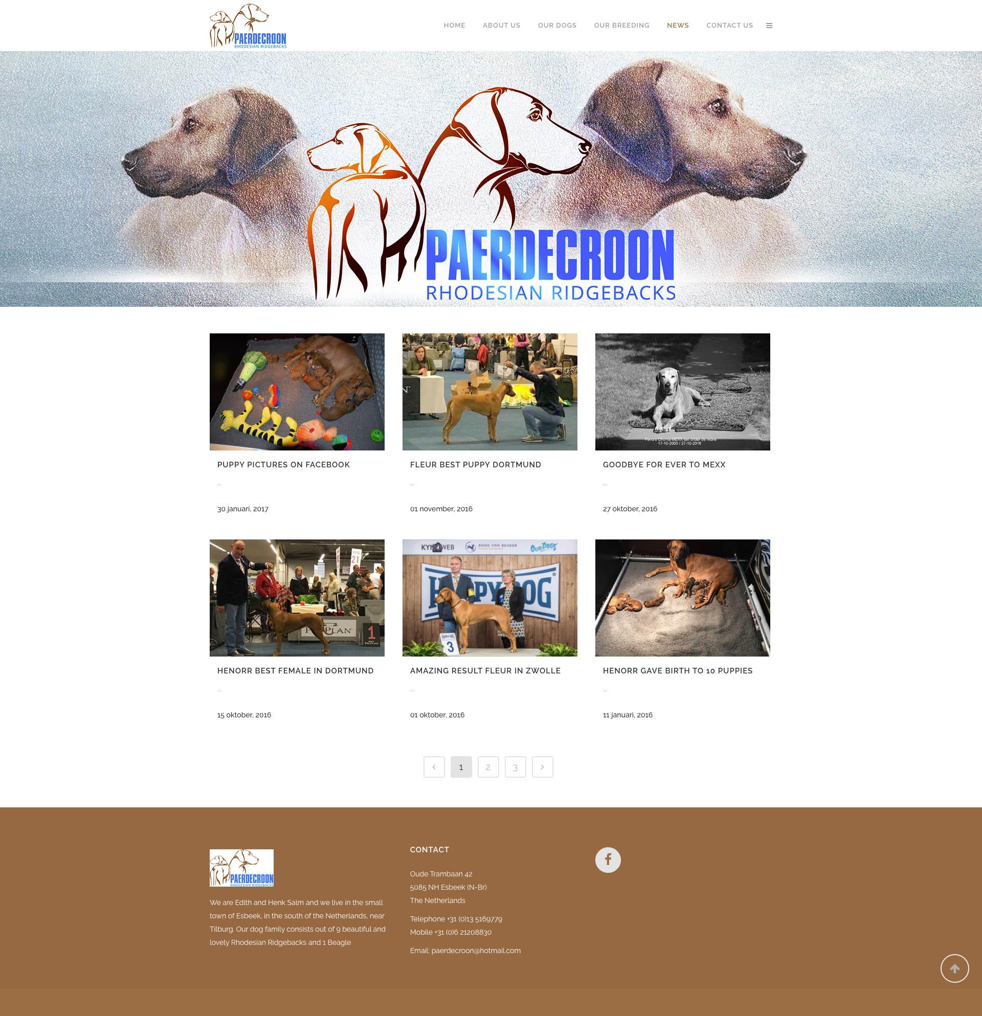 Paerdecroon - News